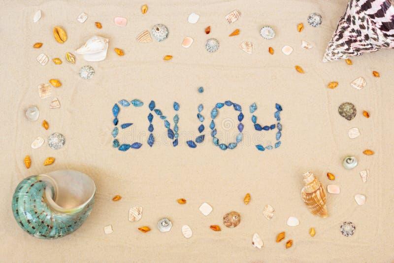 Areia na praia no verão, a inscrição para apreciar dos escudos na areia Configura??o lisa Vista superior fotografia de stock royalty free