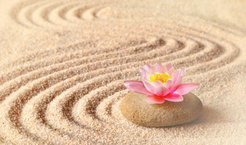 A areia, o lírio da flor e as pedras dos termas no zen jardinam fotografia de stock
