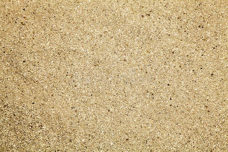 Areia para a maca de gato fotos de stock