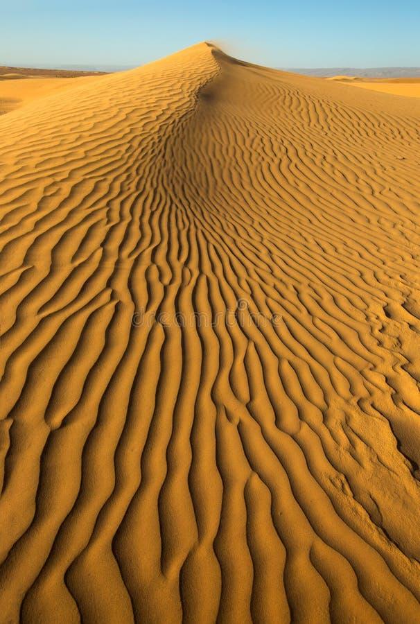 Areia que funde sobre dunas de areia no vento fotos de stock royalty free