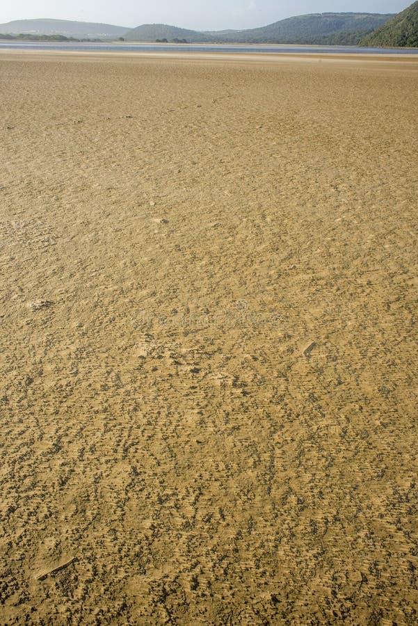Areia Textured do mar pela boca de rio fotos de stock