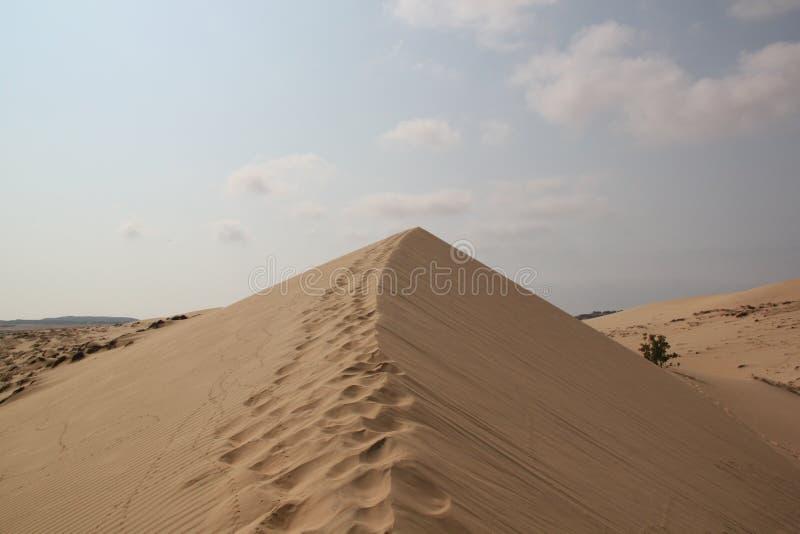 Areias brancas do deserto foto de stock royalty free