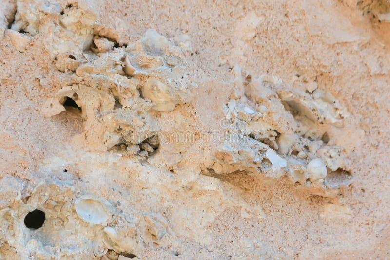 Areias do ouro em uma montanha fotografia de stock