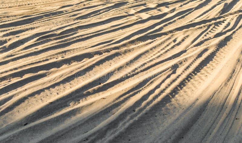 Arena blanca y amarilla en el desierto con las pistas del jeep de la bici y del coche del patio fotos de archivo