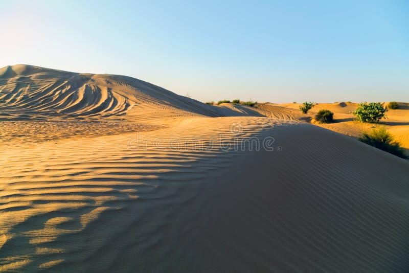 Arena de la duna de Sáhara del desierto de la puesta del sol de Dubai, United Arab Emirates, Dubai imagenes de archivo