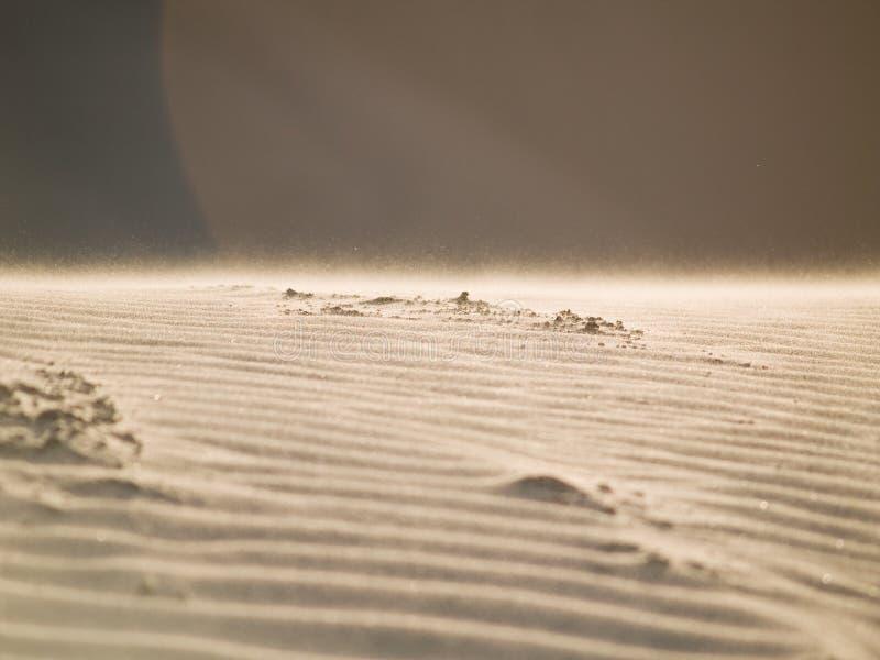 Arena del desierto foto de archivo libre de regalías