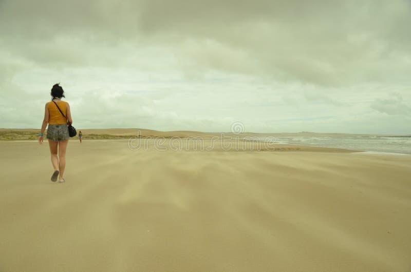 Arena Engelse Gr aire (zand die toenemen) royalty-vrije stock foto