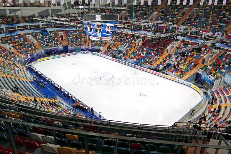 arena lód zdjęcie royalty free