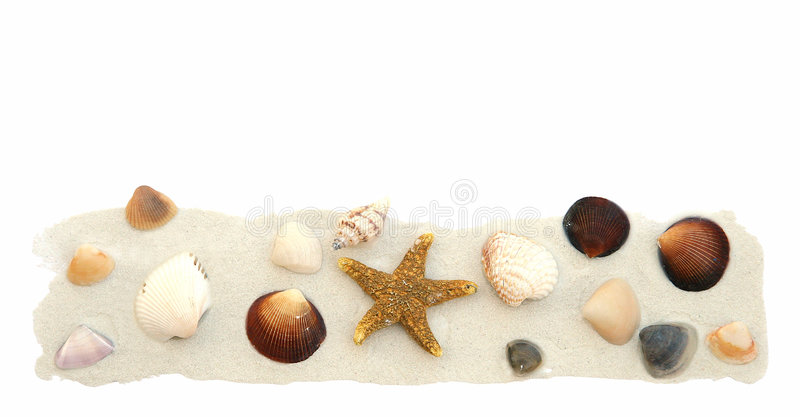 Arena y shelles en blanco fotos de archivo