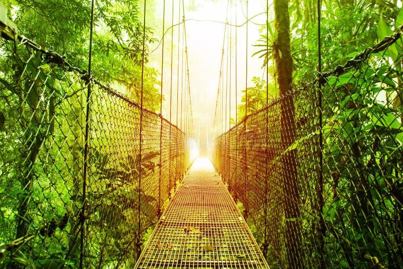 Arenal κρεμώντας πάρκο γεφυρών της Κόστα Ρίκα στοκ φωτογραφίες με δικαίωμα ελεύθερης χρήσης