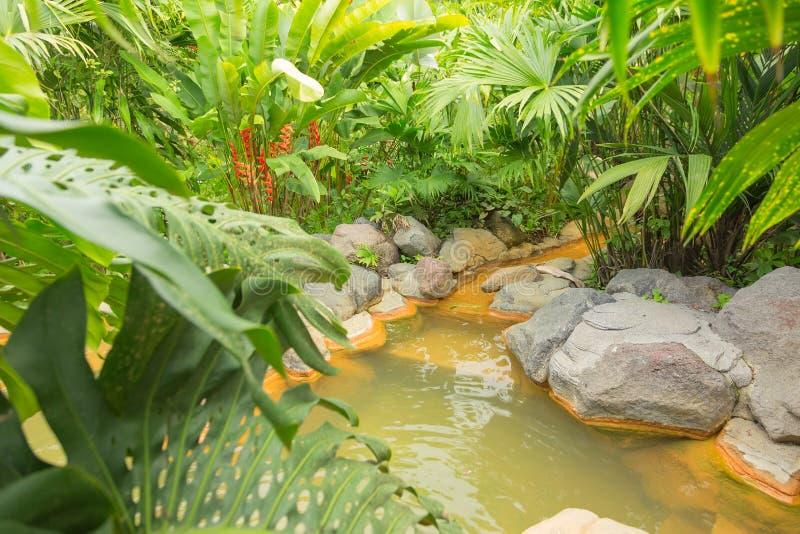Arenal gorąca wiosna, Costa Rica fotografia stock