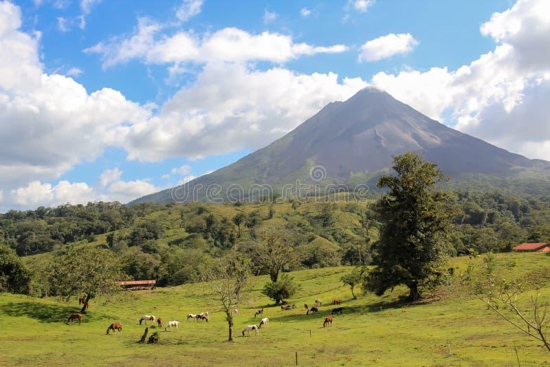 Arenal Volcano , Costa Rica stock photos
