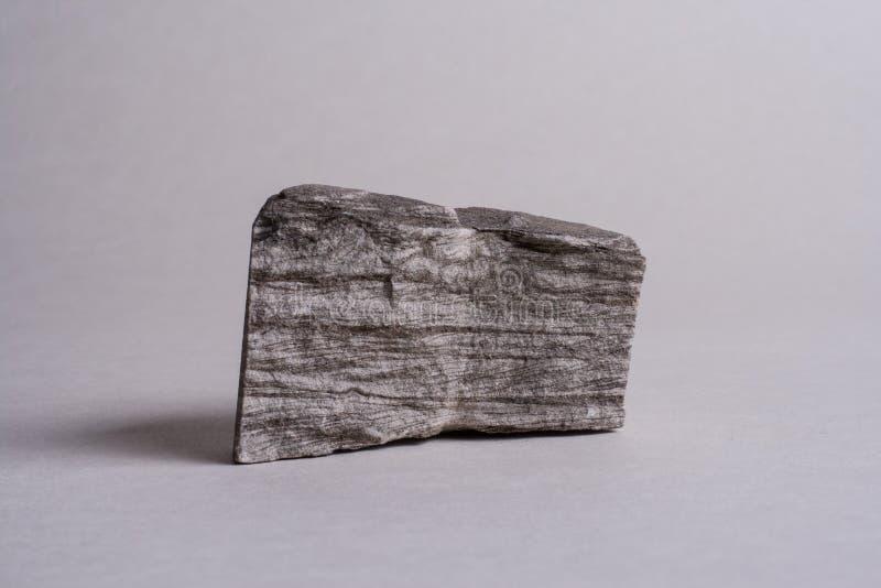 Arenaria sottilmente inserita immagine stock libera da diritti