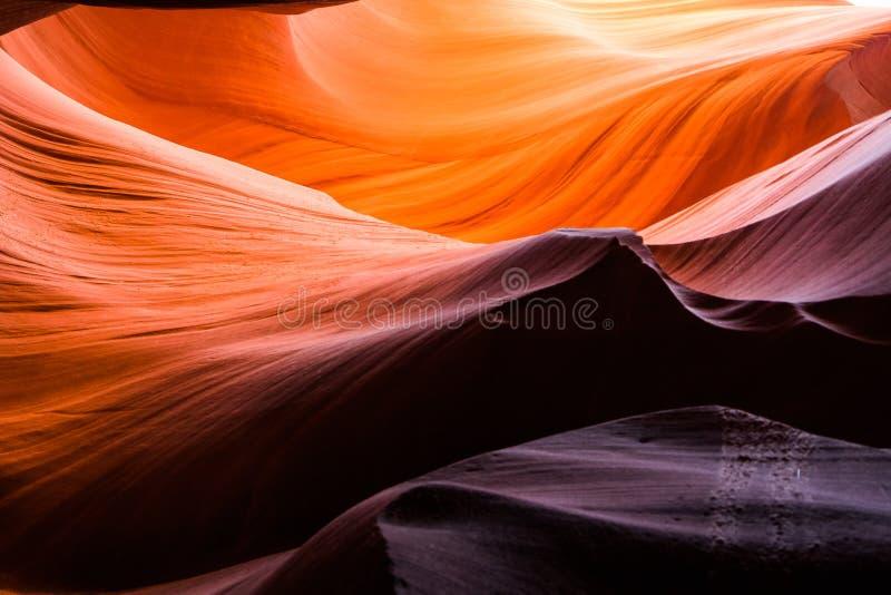Arenaria variopinta del canyon superiore dell'antilope fotografie stock libere da diritti