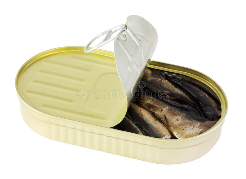Arenque pequeno enlatado dos peixes imagens de stock royalty free