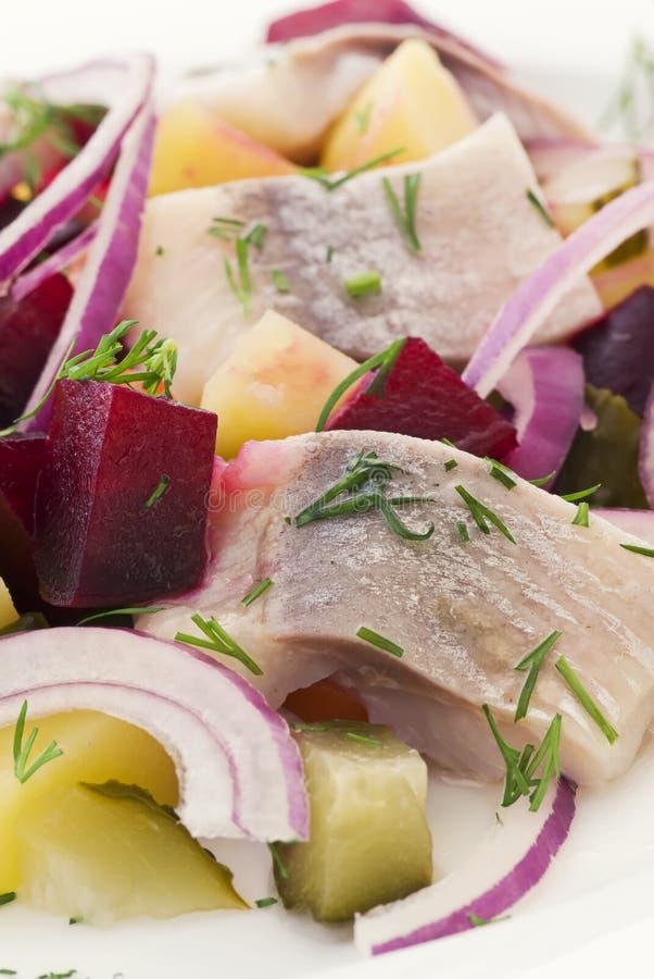 Arenques Salat foto de archivo libre de regalías