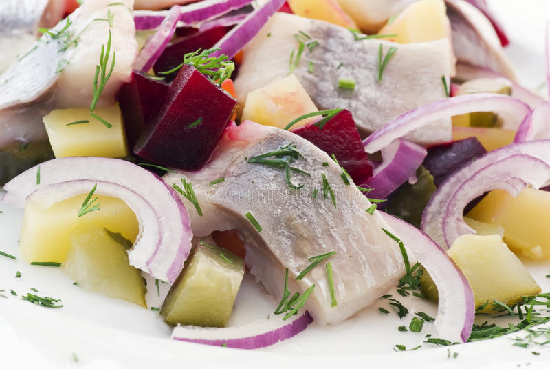 Arenques Salat imagenes de archivo