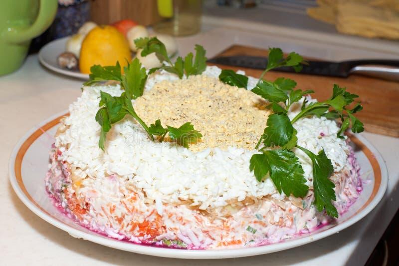 Arenques tradicionais da ensalada russa sob um casaco de pele em um grande prato branco decorado com verdes imagens de stock