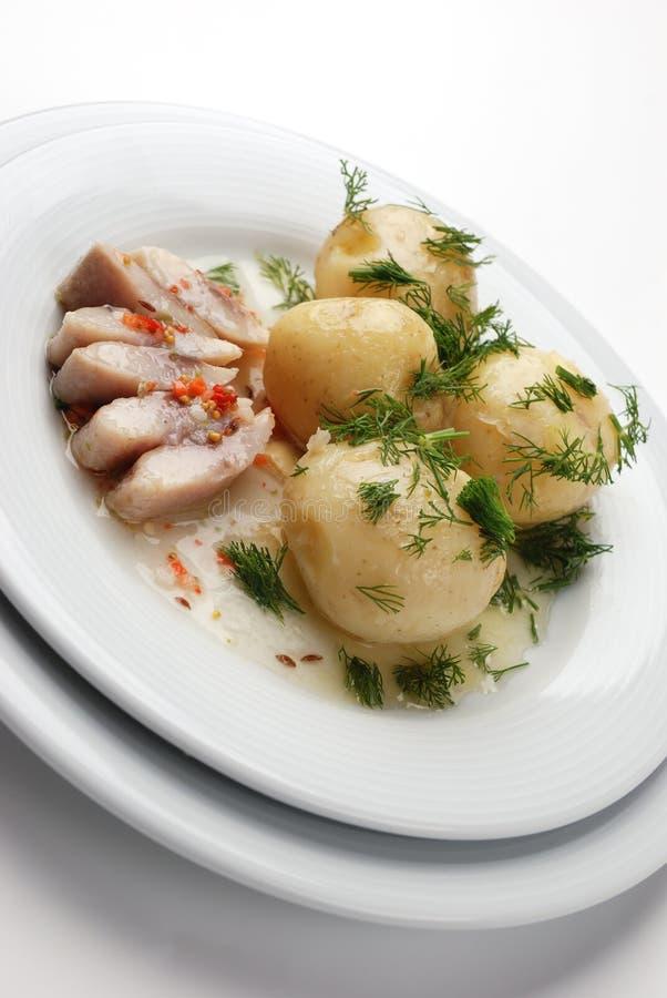 Arenques y patatas hervidas foto de archivo libre de regalías