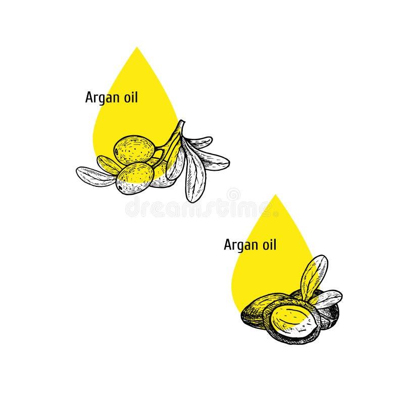 Argan σύνολο εικονιδίων πετρελαίου Συρμένο χέρι σκίτσο Εκχύλισμα των εγκαταστάσεων επίσης corel σύρετε το διάνυσμα απεικόνισης απεικόνιση αποθεμάτων
