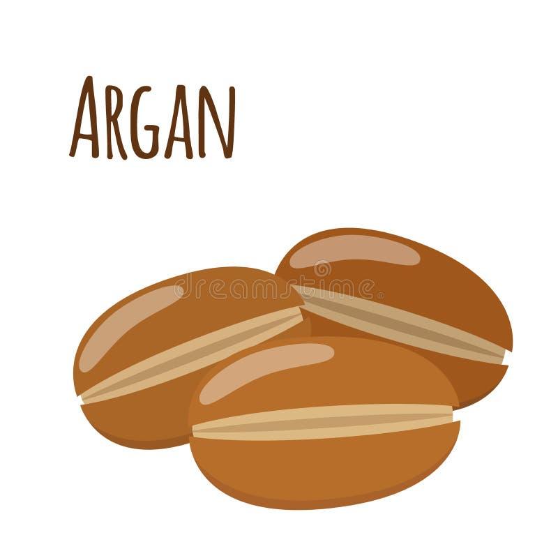 Argan Fruit Kruidenschoonheidsmiddelen, ecotherapie Natuurlijk product Vlakke stijl stock illustratie