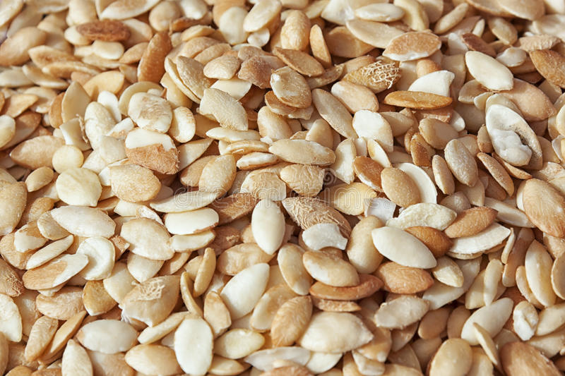 Argan kernels. Argan kernels from the Argan tree, that is cultivated for the oil (argan oil) which is found in the fruit. The oil is rich in fatty acids and is royalty free stock photos