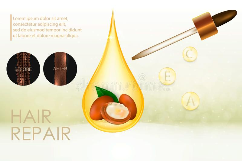Argan oil for hair care. Vector stock illustration
