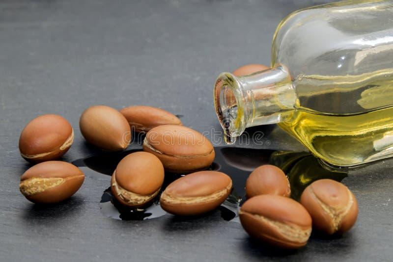 Argan oil , liquid gold of Morocco. stock photos