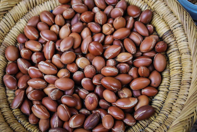 Argan oil nuts stock image