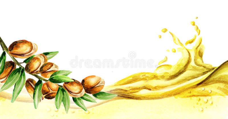 Argan oil wave, watercolor. Illustration stock illustration