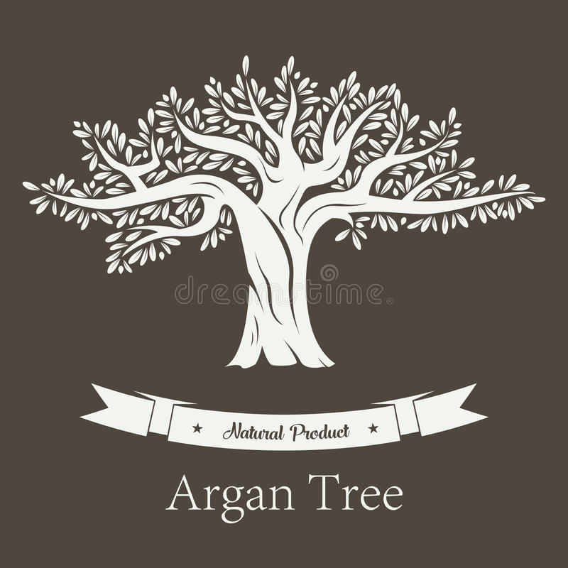 Argan plant or Argania flora fruit tree. Fruit tree with branches and foliage, argan plant or argania flora. Natural cosmetic and oil products, vegetarian or royalty free illustration