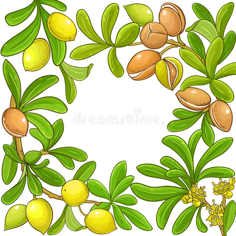 Argan vector frame. On white background royalty free illustration
