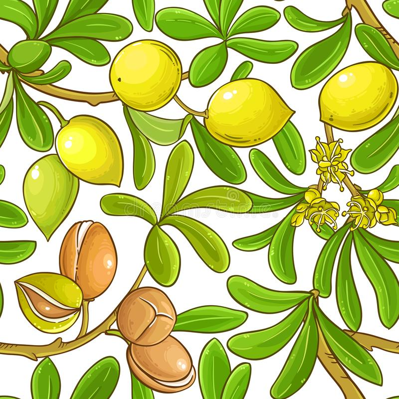 Argan vector pattern. On white background stock illustration