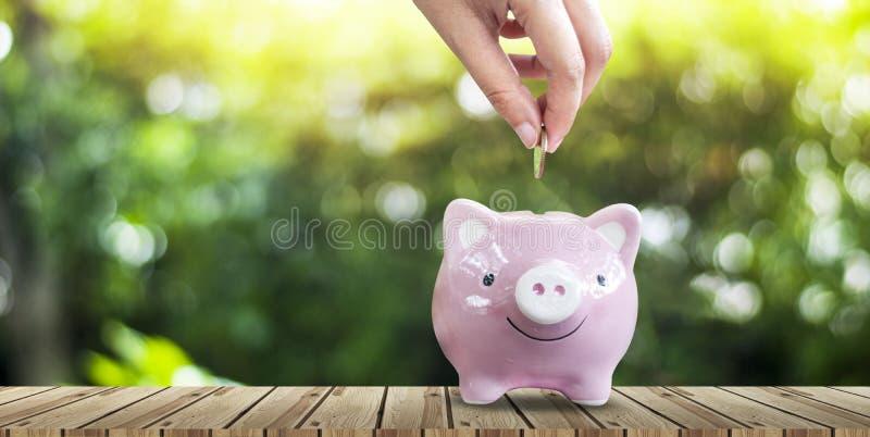 Argent économisant pour des affaires croissantes et le futur concept image stock