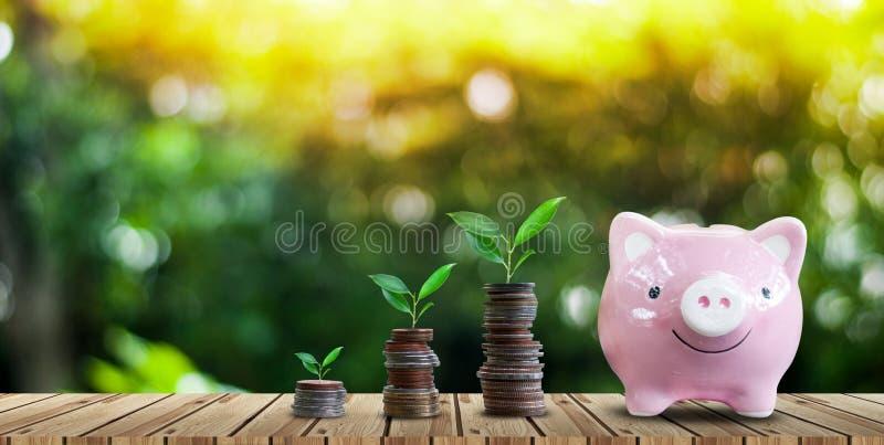 Argent économisant pour des affaires croissantes et le futur concept photos libres de droits
