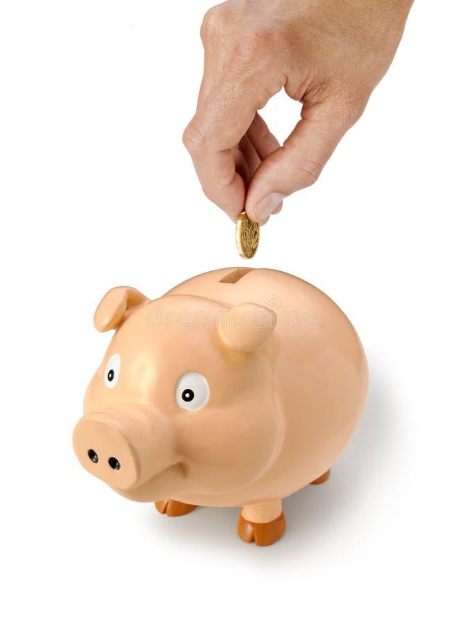 argent australien du dollar de côté porcin photos stock