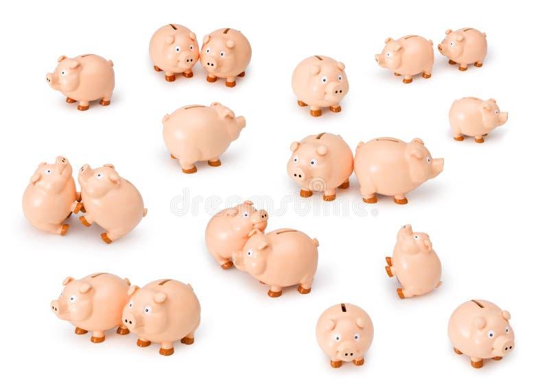 argent de finances de côtés porcin images libres de droits