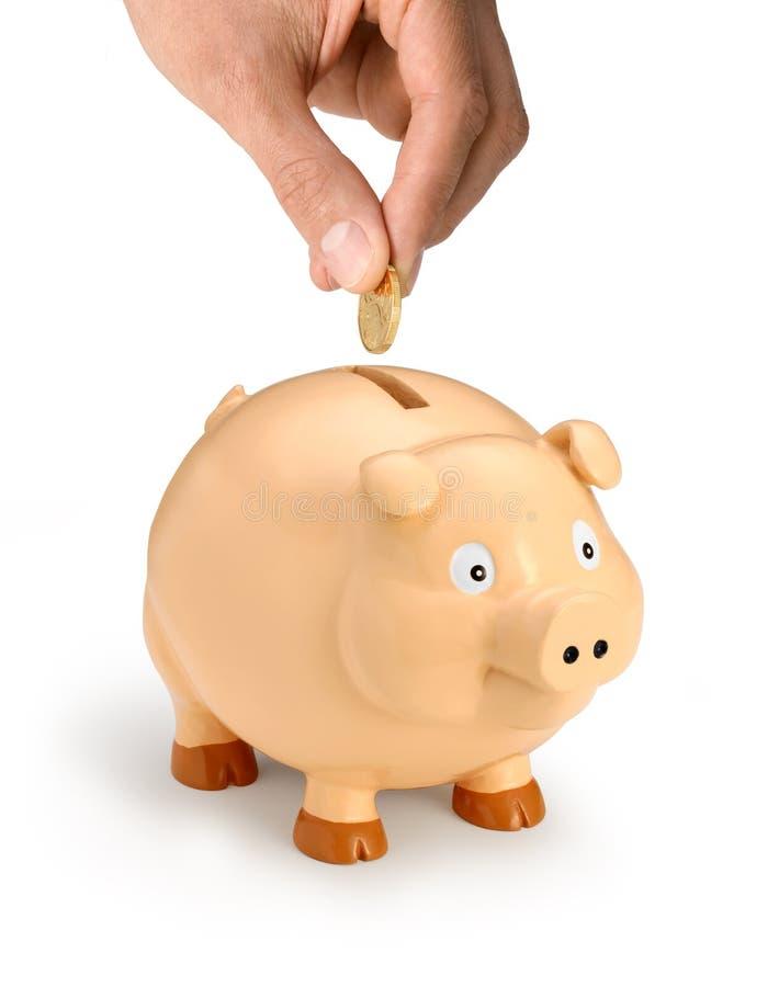 argent de main de côté porcin image stock