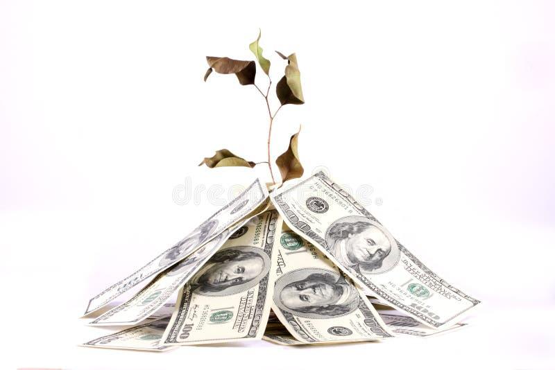argent de malédiction photo stock