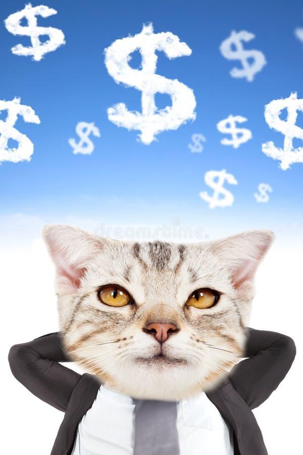 Argent de pensée de tête d'homme d'affaires et de chat image stock