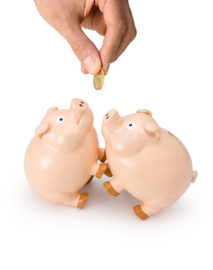 argent du dollar de côté porcin photographie stock