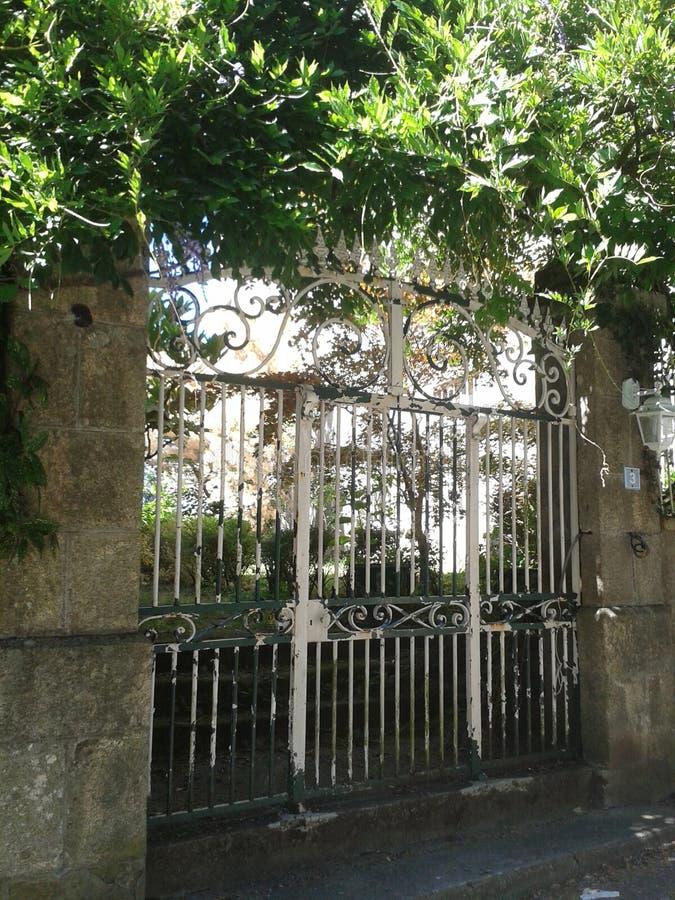 Argentat brama z żałość winogradem ilustracja wektor