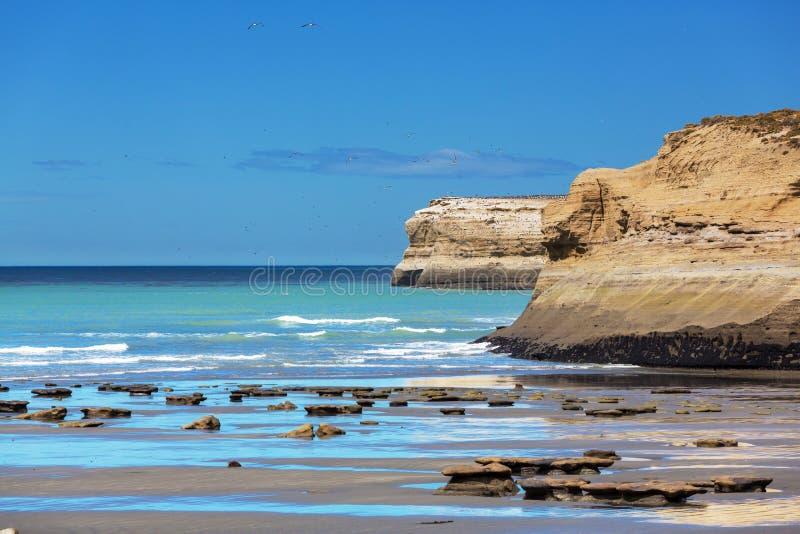 Argentina kust arkivbilder