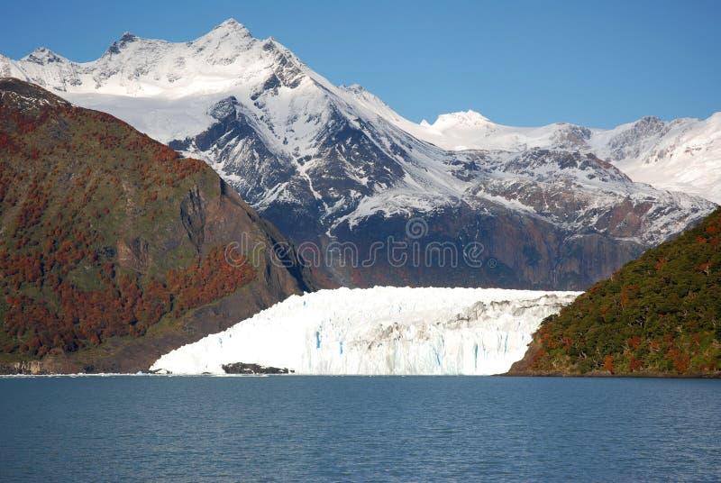 argentina lodowa patagonia fotografia stock