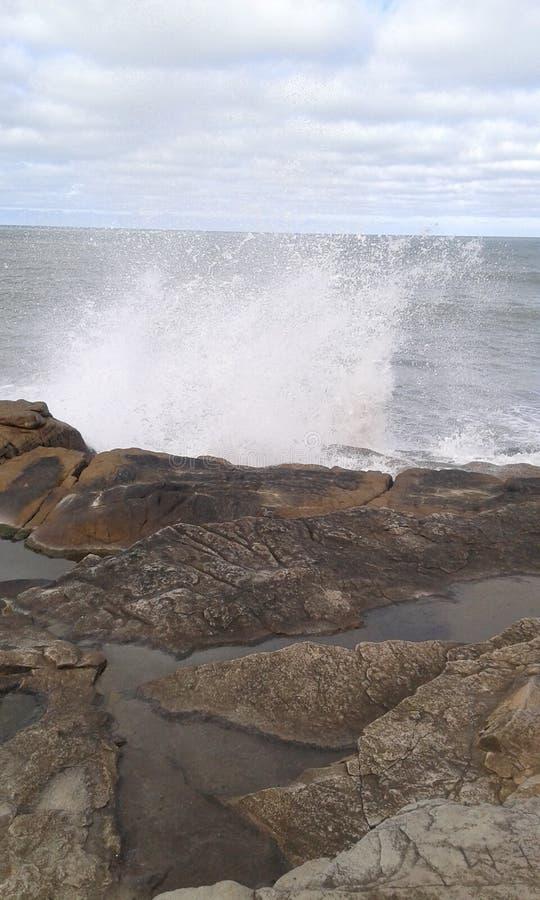 Argentina Mar del Plata arkivfoton