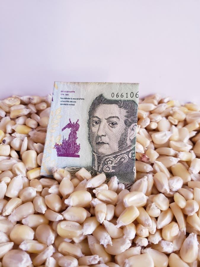 Argentina, producerande land för majs, torra havrekorn och argentine sedel av fem pesos arkivfoton
