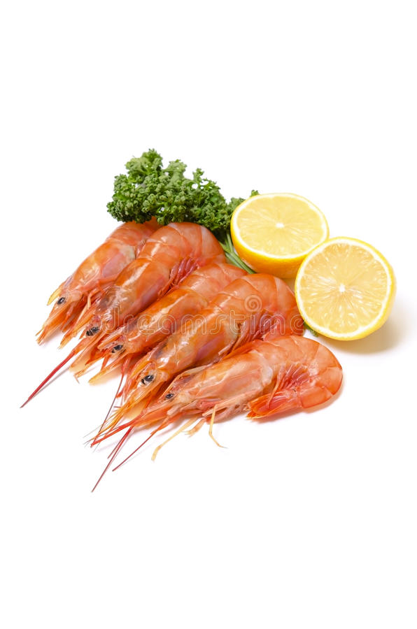 Argentine Red Shrimp Stock Photos