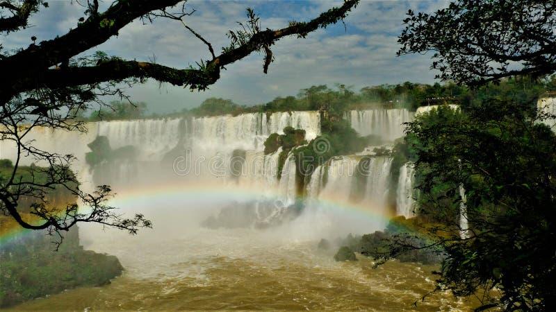 Argentinië de Iguazu-watervallen royalty-vrije stock foto