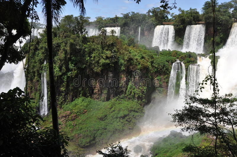 argentinianen faller iguazusidan arkivbild