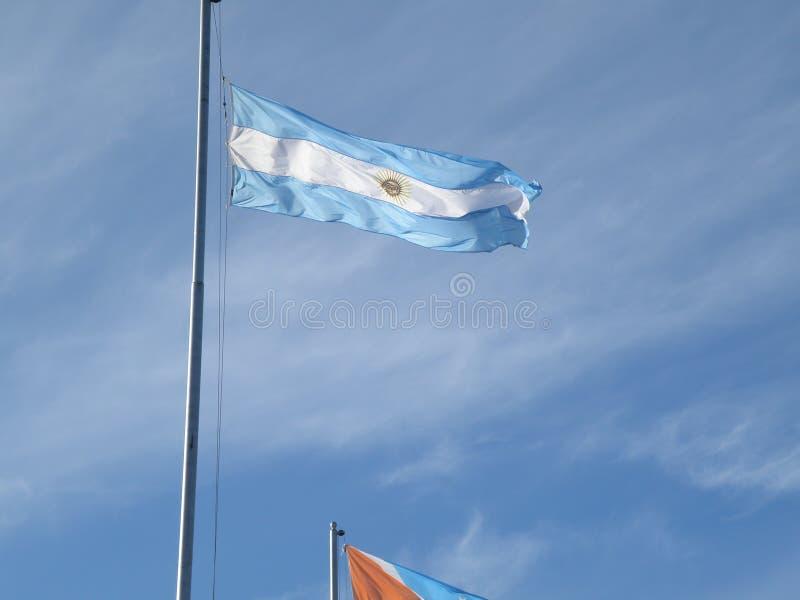 Argentinsk flagga ondulated av den blåsiga wheatheren royaltyfria bilder